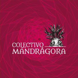 Mandrágora Cartonera
