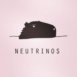 Neutrinos