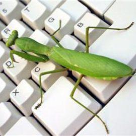 Mantis editores