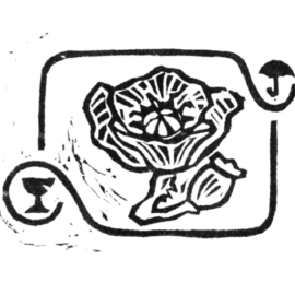 Amapola Cartonera